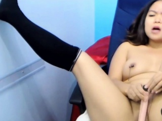 Asian cam model strips with an increment of toys